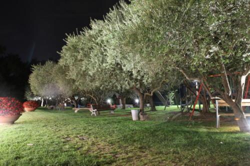 Area giochi di sera